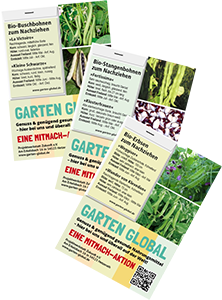 Hülsenfrüchte, Erbsen, Stangenbohnen, Buschbohnen als samenfestes Saatgut